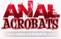 Anal Acrobats Coupon