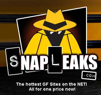 SnapLeaks Discount